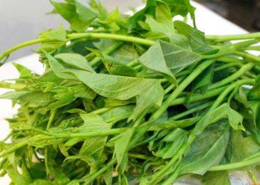 rau lang chế biến món ăn