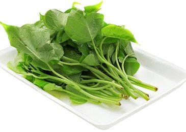 Cách trồng rau lang tốt nhất