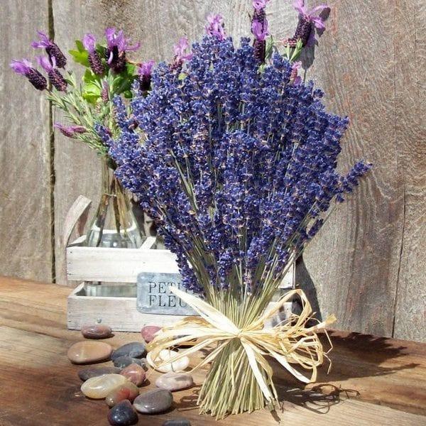 Tác dụng của hoa oải hương khô