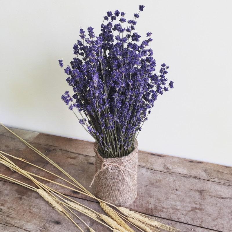 Tác dụng của hoa oải hương khô trang trí
