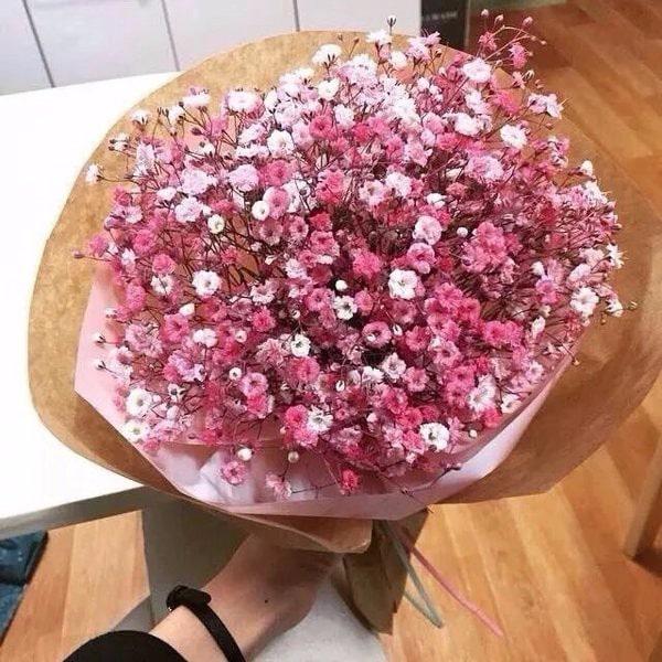 bó hoa hoa babay đẹp nhất