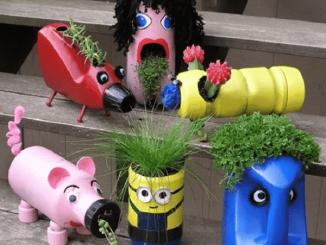 Cách trồng rau sạch bằng vỏ chai nhựa 8