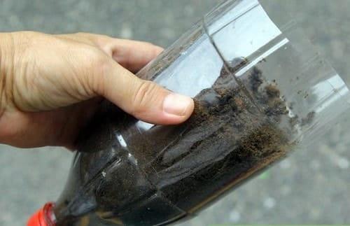 Đổ đầy đất dinh dưỡng đã chuẩn bị sẵn vào chai, lưu ý nhớ đậy nắp ở chai dưới cùng