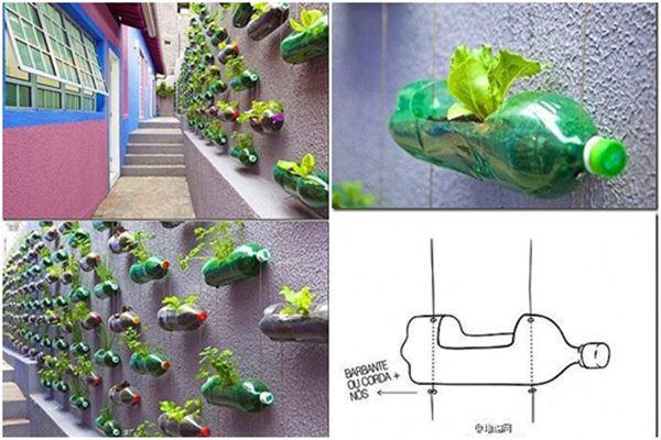 sự cải tiến trong cách thiết kế giàn trồng rau xanh
